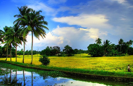 About Keralam