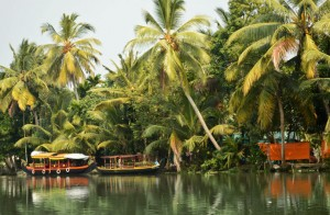 Seeking Roots -Summer To Kerala
